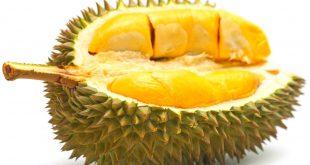 Những tác dụng phụ thường gặp khi ăn quá nhiều sầu riêng